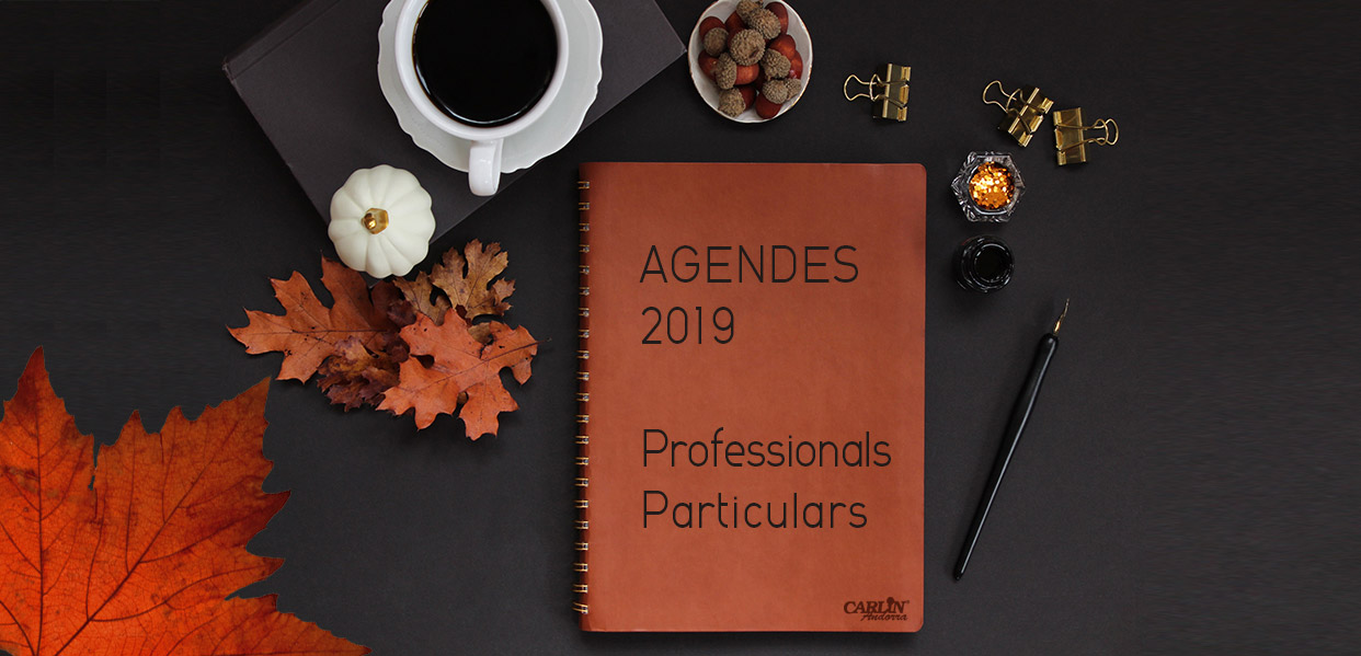 slide-webAGENDES2019-01